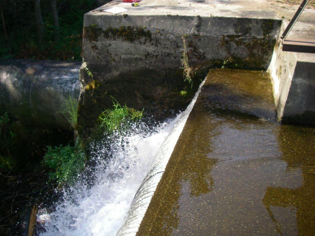 Barlett Carry Dam