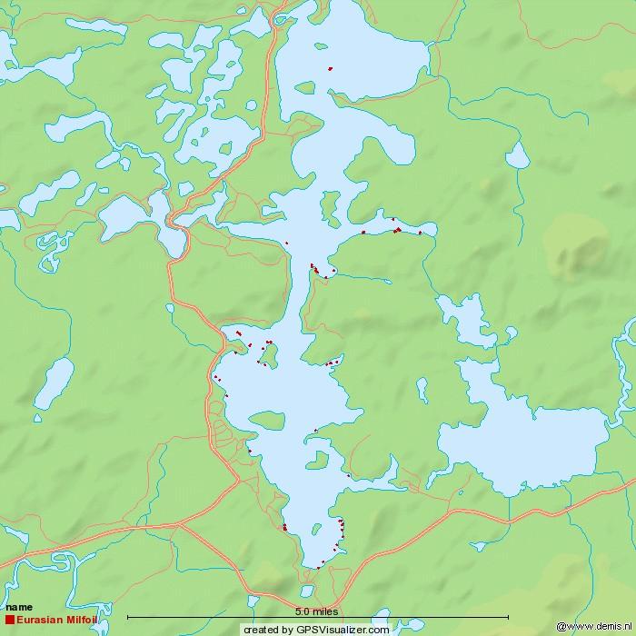 Milfoil Map Week 2