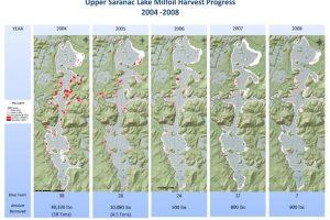 Milfoil map 2004–2008