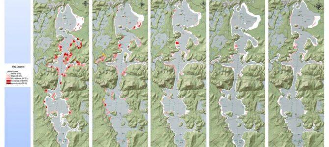 Milfoil Maps 2004 2008