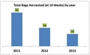 total bags