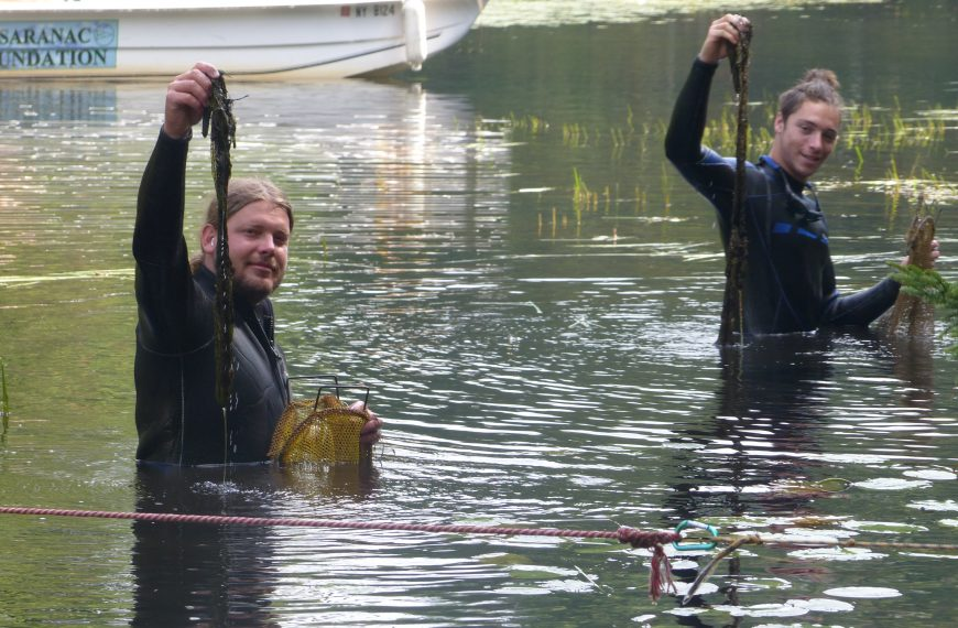 USF unveils 2020 Fish Creek AIS report