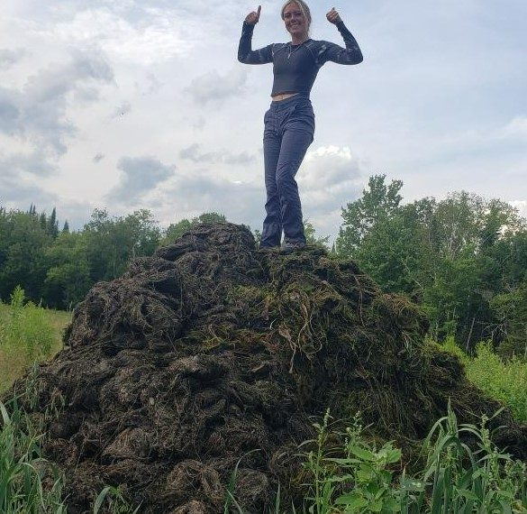 Over 6.5 tons of milfoil removed from Follensby Clear Pond
